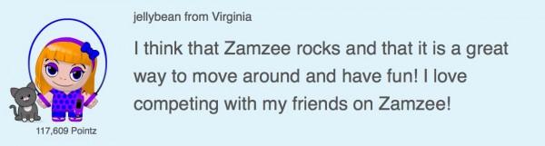zamzee_review